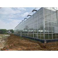 山西临汾农业生态旅游玻璃智能温室大棚7米高、一键开窗控温、6000平方工程造价