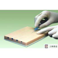 静脉穿刺模块(护理模型)上海泰益公司021-63532830