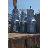 潜水轴流泵天津生产厂家 雨辰泵业