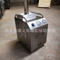 高效移动蒸汽洗车机 蒸汽洗车机生产厂家 高温蒸汽洗车机