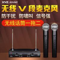 厂家直销KTV卡拉OK会议 VHF 无线麦克风一拖二无线话筒