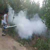 吉林市蔬菜杀虫烟雾机 云南甘蔗香蕉打药机 果园杀虫除菌打药机厂家