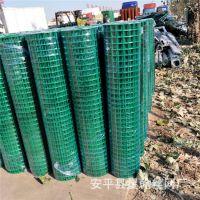 厂家直销养殖铁丝绿色围栏网 编织浸塑荷兰网 镀锌小孔电焊网