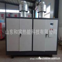 厂家直销 立式燃气锅炉 节约燃料 铸铁模块锅炉