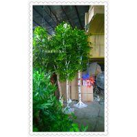 仿真幸福树 大型白桦树酒店园林工程  大厅布景玻璃钢树干假树