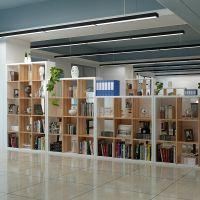 文件柜木质资料柜书柜书架格子柜展示柜组合置物办公室隔断柜储物