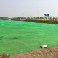 绿色盖土网厂家 市政工地防尘网 大棚遮阳网