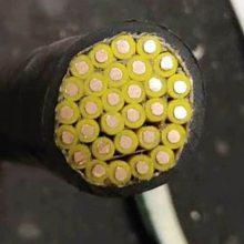 江南五彩牌铜芯聚氯乙烯绝缘聚录乙烯护套控制屏蔽电缆