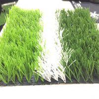 奥林 足球场人造草坪