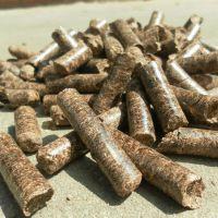 供应环保锯末颗粒机 秸秆木屑燃料造粒机 立式环模生物质颗粒机械
