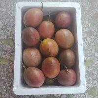 广西百香果水果代理一手货源批发一件代发