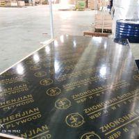 【厂家直销】清水模板 板面光滑平整 易脱模 周转12次