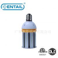 LED玉米灯BTCL-502027