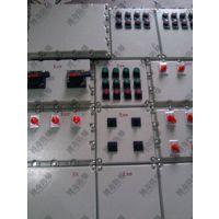 防爆灯具新疆维吾尔自治区博奇BXD51-防爆动力配电箱