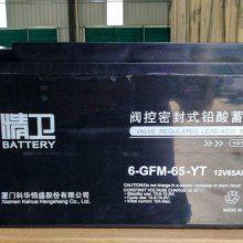 科华精卫蓄电池6-GFM-65-YT 12V65AH免维护铅酸蓄电池