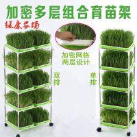 芽苗菜育苗盘架子任意组合多层芽苗盘长孔小麦草种植盘豆芽盘