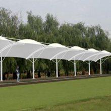 新疆膜结构-新疆大疆丰景公司-膜结构自行车棚
