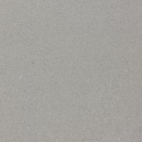 PINLI品立陶瓷ZSL06092G 600*600mm微粉抛光砖斑点通体砖地砖厂家