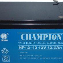 冠军蓄电池 NP12-12 12V12AH原装正品
