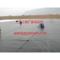 http://himg.china.cn/1/5_264_1052189_500_375.jpg