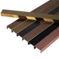 不锈钢T型条压边条瓷砖腰线吊顶电视背景墙嵌入式钛金属装饰线条