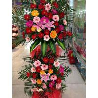 新店开业植物-汉口开业植物-武汉花卉林婚庆鲜花店