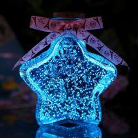 装架子星星的瓶子月亮许愿玻璃创意可爱夜光爱情1314颗520特大号