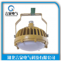 直销三防LED高效免维护照明灯20W30W40W50WIP65防护等级
