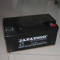 东洋蓄电池12V65AH 东洋免维护蓄电池6GFM65 UPS蓄电池 原装正品