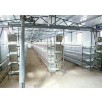 全自动肉鸡笼 立体式自动出粪鸡笼 优质四层蛋鸡笼 全套养殖设备