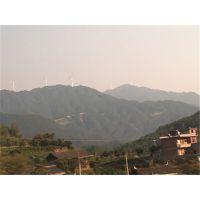 风力发电绿化施工植草梧州市有没有可以长期复绿的草种