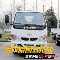 泰安货车出租 泰安双排货车出租拉货 泰安搬家货车