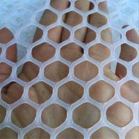 白色塑料网 养鸡用地网 白色苗床网