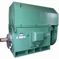 供应优质北京东方华盛高压三相异步电动机YKK5003-6 10KV 560KW IP44