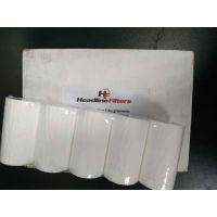 英国Headlinefilters原装空气滤芯/初级滤芯/SBI单体装置一级滤芯25mm