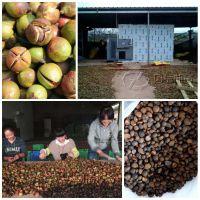 茶籽烘干机 空气能箱式山茶籽烘干机 多功能油茶籽烘干机