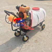 贵阳三轮车喷雾器价格 大面积消毒喷药机