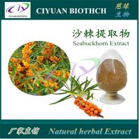 沙棘提取物10:1 沙棘果粉 Sea buckthorn Fruit Extract 慈缘生物