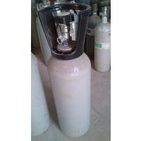 陕西氮中一氧化氮标准气体,8L,4L标准气体,环境检测标气