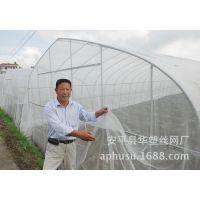 【华塑直销】防虫网、蔬菜防虫网、尼龙防虫网、乙烯防虫网