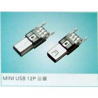 联志 MINI USB 12PIN (公头)