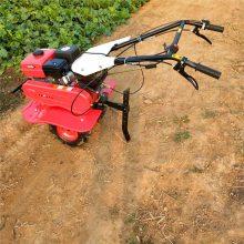 手扶汽油旋耕机 葡萄园施肥机