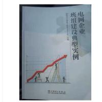 新书上架:电网企业班组建设典型实例-电力出版社电网班组建设典型实例-新书