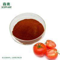厂家供应番茄粉 食品原料 现货销售 1公斤每包西红柿粉