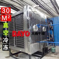 真空急冻干燥机 榴莲真空冻干设备 批量化连续生产 青葱冻干机
