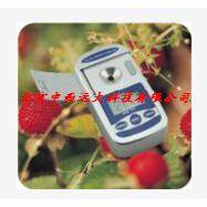 中西特价便携式糖度计型号:CN61M-TD-45库号: