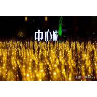 全中国灯光展龙头企业