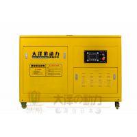 220伏的电压20kw柴油发电机价格