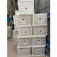 通江生鲜配送箱食品塑料周转桶生产厂家 PP塑料周转框