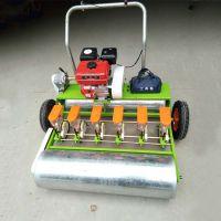 人力蔬菜精播机/小型红萝卜播种机/手推式播种机价格